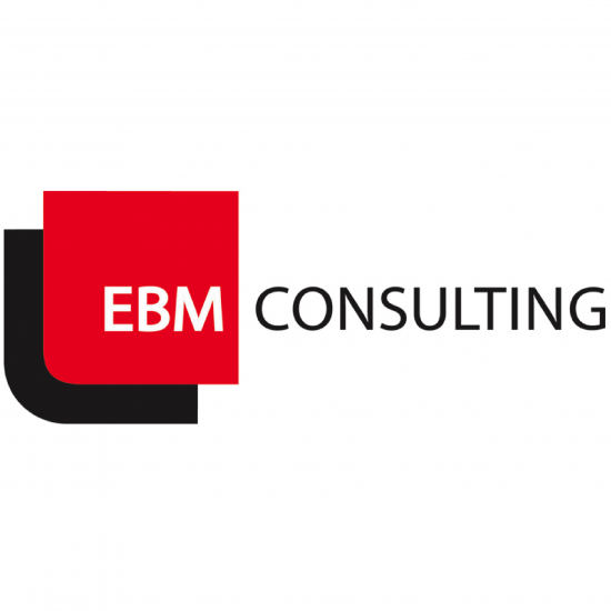 EMB-Consulting-550x550.png