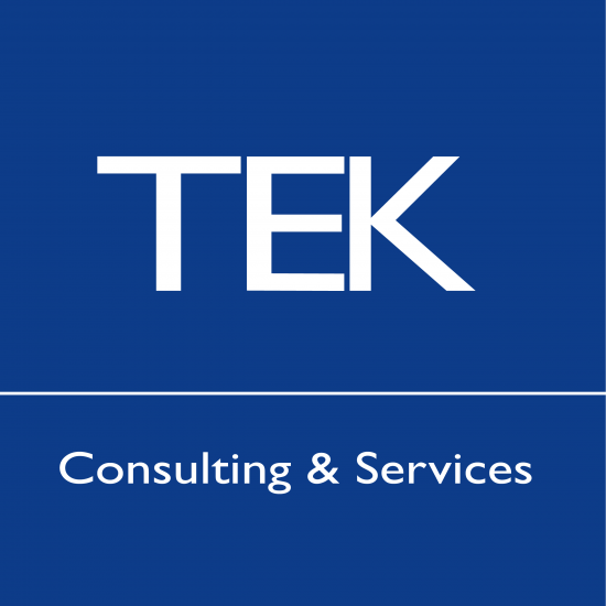 tek-consulting-550x550.png