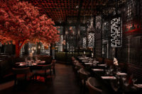 Tattu-Restaurant-Cherry-Blossom-RIGHT.jpg